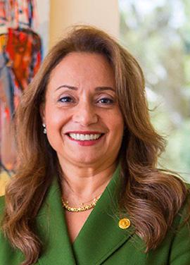 Dr. Amani Abou-Zeid